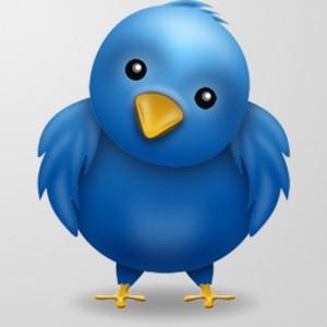 Cute Twitter Birdie